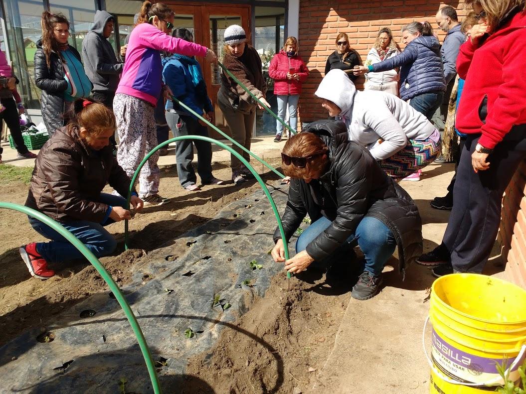 Taller de huerta familiar y construcci n de vivero tipo for Vivero municipal